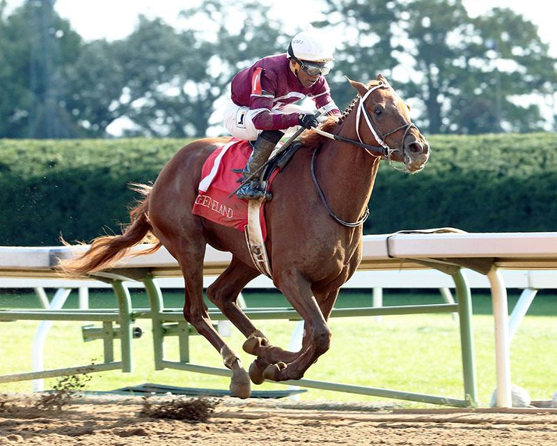 Gun Runner winning a 2-year-old allowance at Keeneland on Oct. 17, 2015 - Coady photo