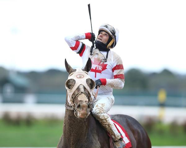 Sky Promise wins first running of Temperence Hill S.