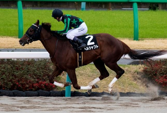 Will Take Charge colt wins final leg of Japan's KY Derby challenge