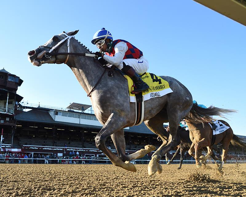 Volatile goes gate-to-wire in Vanderbilt H. (G1)