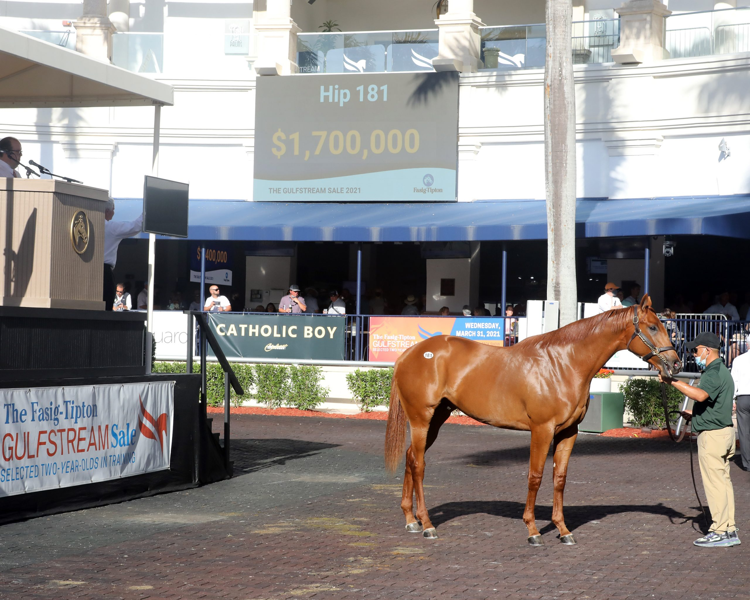 Hip 181 at the 2021 Fasig-Tipton Gulfstream Sale sold for $1,700,000.
