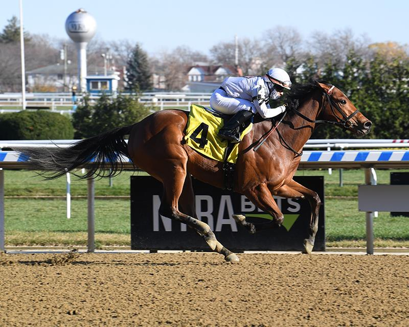 Palace Malice filly earns big number in dirt debut
