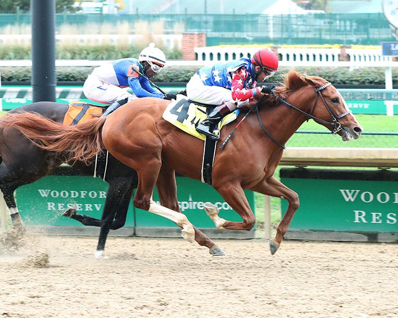 "King Fury a ""now"" colt for Breeders' Cup Juvenile (G1)"