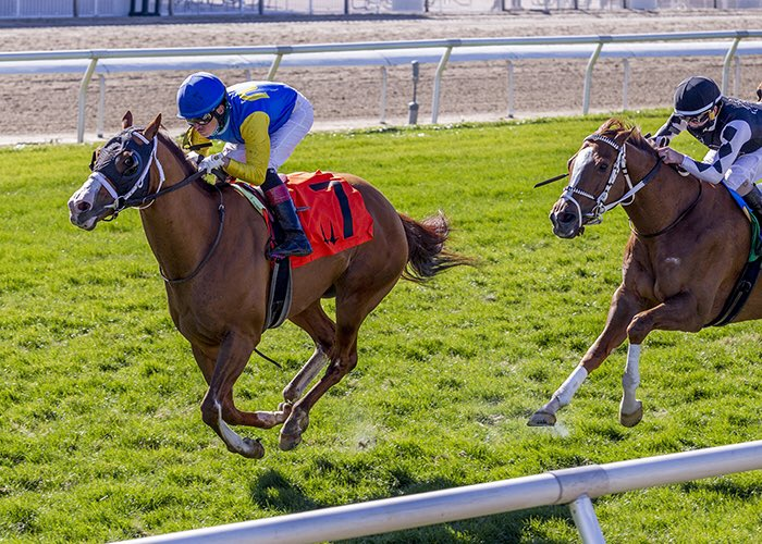 Will Take Charge's Manny Wah wins Duncan Kenner S. in turf debut