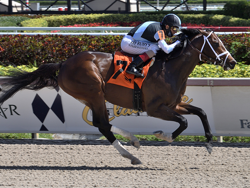 Palace Malice's Nocturnal fends off challenges for second straight win