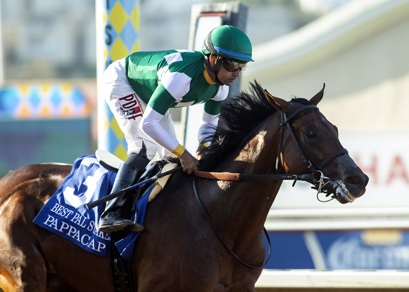 Pappacap takes Best Pal (G2) to become Gun Runner's first SW