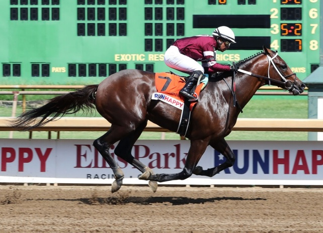 Regally-bred Guntown fires big on stretch-out